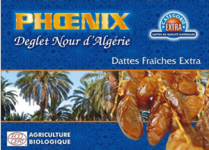 biofruisec-datte-deglet-nour-algerie-bio