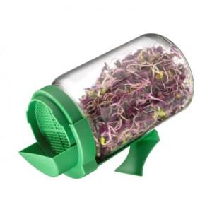 bocal-pour-graines-germer
