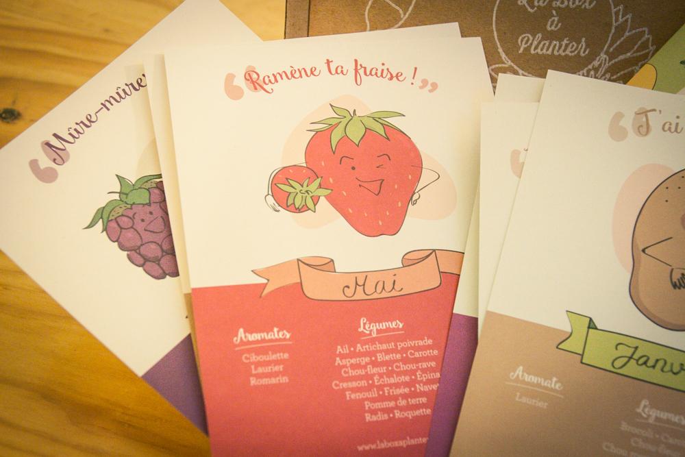 calendrier fruits légumes de saison